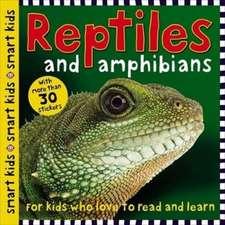 Smart Kids Sticker Dinosaur