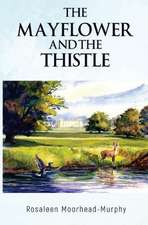 Mayflower And The Thistle