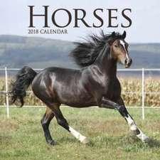 Horses M