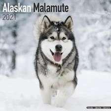 Alaskan Malamute 2021 Wall Calendar