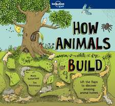 Lonely Planet How Animals Build