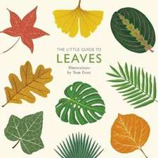 Little Guide to Leaves