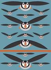 I Like Birds: Spot & Jot