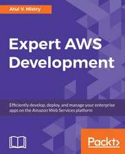 Expert AWS Development