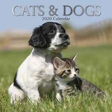 CATS DOGS 2020