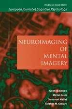 Neuroimaging of Mental Imagery
