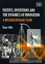 Patents, Inventions and the Dynamics of Innovation