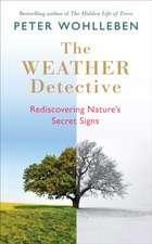 Weather Detective
