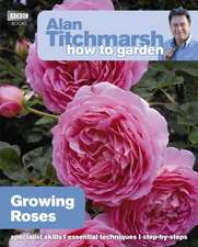 Growing Roses:  Pests and Problems
