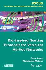 Bio–inspired Routing Protocols for Vehicular Ad–Hoc Networks