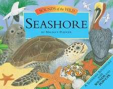 Sounds of the Wild: Seashore