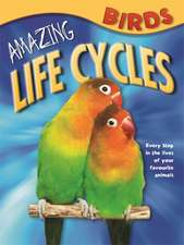 Amazing Life Cycles: Birds
