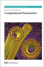Computational Nanoscience