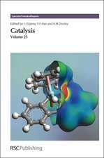 Catalysis, Volume 25