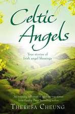Celtic Angels: True stories of Irish Angel Blessings