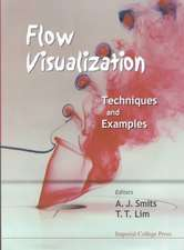Flow Visualization:  Techniques and Examples