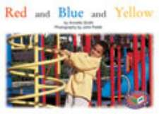 Red and Blue and Yellow PM Red Maths Around Us