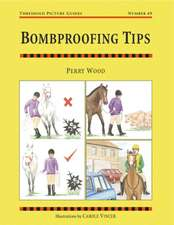 Bombproofing Tips: Threshold Picture Guide No 49