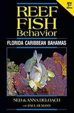 Reef Fish Behavior - Florida Caribbean Bahamas