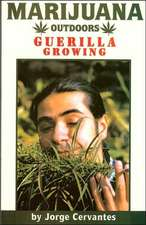 Marijuana Outdoors: Guerrilla Growing
