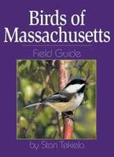 Birds of Massachusetts Field Guide
