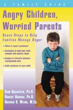 Angry Children, Worried Parents: Seven Steps to Help Families Manage Anger