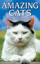 Amazing Cats: Stories of Intuition, Compassion, Mystery & Extraordinary Feats