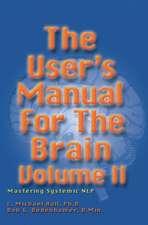 User's Manual for the Brain, Volume II:  Mastering Systemic Nlp
