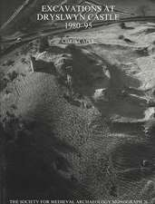 Excavations at Dryslwyn Castle 1980-1995:  A Rural Landscape Explored [With CDROM]