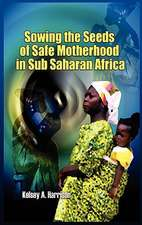 Sowing the Seeds of Safe Motherhood in Sub-Saharan Africa