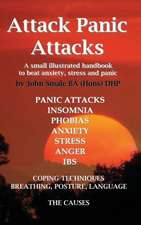 Attack Panic Attacks, How to Beat Anxiety, Anger, Ibs, Insomnia, Phobias, Stress and Panic