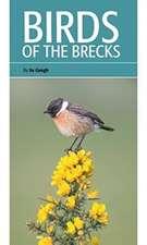 Birds of the Brecks