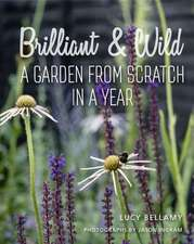 Brilliant & Wild: A Garden from Scratch in a Year
