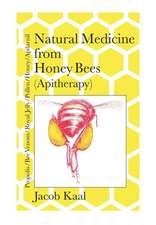 Natural Medicine from Honey Bees (Apitherapy)