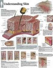 Understanding Skin Chart: Laminated Wall Chart