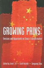 Growing Pains: Tensions and Opportunity in China's Transformation