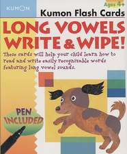 Long Vowels Write & Wipe! Flash Cards [With Toxic-Free Pen]