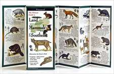Land Mammals of the Southeast