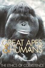 Great Apes & Humans