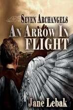 An Arrow In Flight