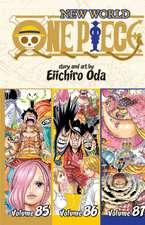One Piece (Omnibus Edition), Vol. 29: Includes vols. 85, 86 & 87