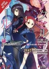 Accel World, Vol. 19 (light novel)
