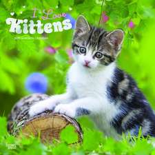 Kittens, I Love 2019 Square Wall Calendar
