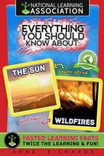 Everything You Should Know about the Sun and Wildfires