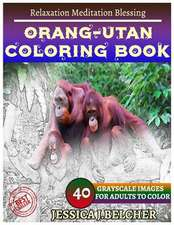 Orang-Utan Coloring Book for Adults Relaxation Meditation Blessing