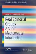 Real Spinorial Groups: A Short Mathematical Introduction