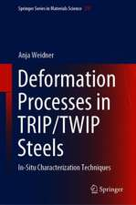 Deformation Processes in TRIP/TWIP Steels: In-Situ Characterization Techniques