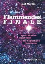 Flammendes Finale: Spektakuläre Ergebnisse der Supernovaforschung