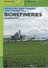 Biorefineries: An Introduction