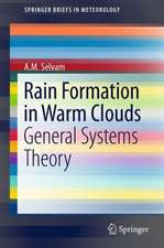 Rain Formation in Warm Clouds: General Systems Theory